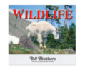 Wonderful World Wildlife - 2016 Calendar