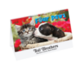 Spiral Desk Tent Calendars - Four Paws - 2015
