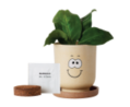 Goofy® Eco-Planter with Marigold Seeds